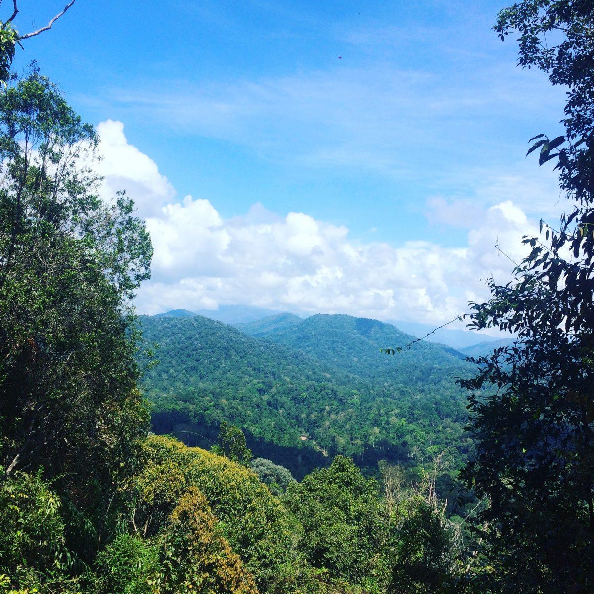 Negara Park, Malezja